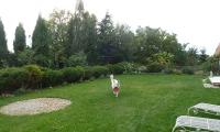 Z naszego podwórka